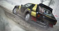 DiRT Rally - Screenshots - Bild 21