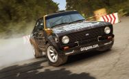 DiRT Rally - Screenshots - Bild 15