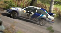 DiRT Rally - Screenshots - Bild 4
