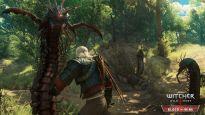 The Witcher 3: Wild Hunt - DLC: Blood and Wine - Screenshots - Bild 4