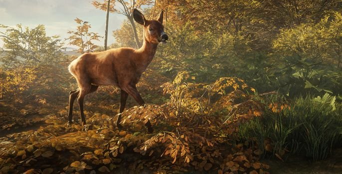 theHunter: Call of the Wild - Test