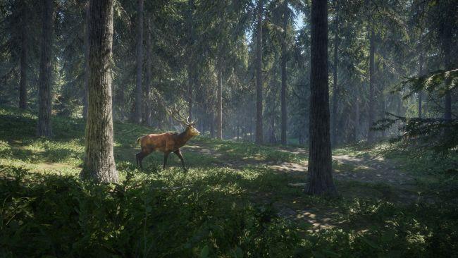 theHunter: Call of the Wild - Screenshots - Bild 5