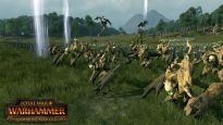 Total War: Warhammer - DLC: Das Reich der Waldelfen - Screenshots - Bild 5