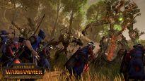 Total War: Warhammer - DLC: Das Reich der Waldelfen - Screenshots - Bild 9