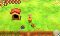 Story of Seasons: Trio of Towns - Screenshots - Bild 15
