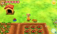 Story of Seasons: Trio of Towns - Screenshots - Bild 18