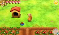 Story of Seasons: Trio of Towns - Screenshots - Bild 14