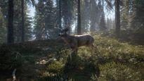 theHunter: Call of the Wild - Screenshots - Bild 12