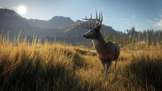 theHunter: Call of the Wild - Screenshots - Bild 19