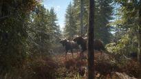 theHunter: Call of the Wild - Screenshots - Bild 15