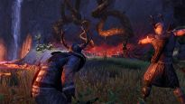 The Elder Scrolls Online - DLC: Horns of the Reach - Screenshots - Bild 5