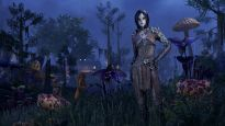 The Elder Scrolls Online: Morrowind - Screenshots - Bild 5