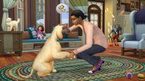 Die Sims 4: Cats & Dogs - Screenshots - Bild 2
