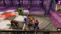 Neverwinter Nights: Enhanced Edition - Screenshots - Bild 2