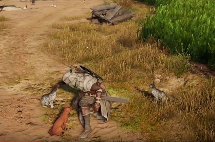 10 Dinge Die Du Bestimmt Nicht über Assassins Creed Origins