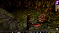 Neverwinter Nights: Enhanced Edition - Screenshots - Bild 7