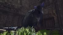 The Last Guardian - Screenshots - Bild 8