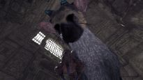 The Last Guardian - Screenshots - Bild 9