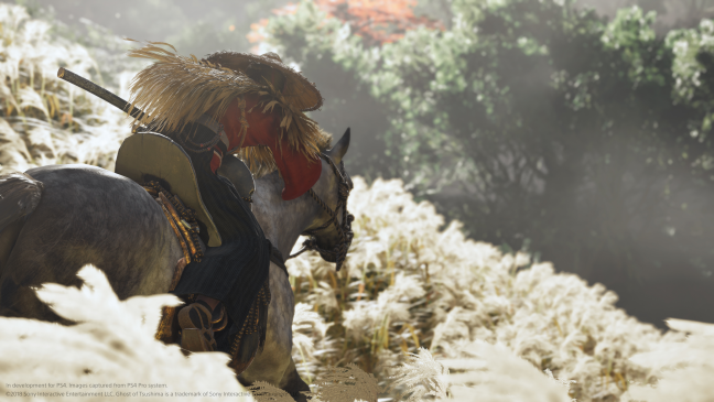 Ghost of Tushima - Screenshots - Bild 10