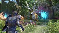 The Elder Scrolls Online: Summerset - Screenshots - Bild 3
