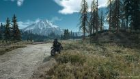 Days Gone - Screenshots - Bild 3