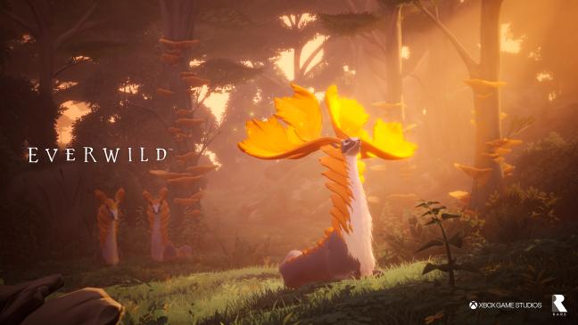 Everwild - Screenshots - Bild 2