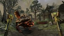 The Elder Scrolls Online - Screenshots - Bild 20