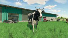 Landwirtschafts-Simulator 2022 - News