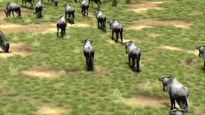 Afrika - Trailer (TGS 06)