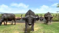 Afrika - TGS-Trailer