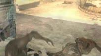 Dark Sector - Chopper Shootout Trailer