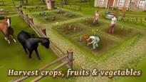 Family Farm - Trailer #2