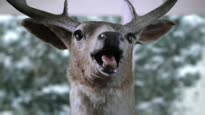 Cabela's Big Game Hunter 2012 - 15 sec Holiday TV-Spot