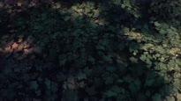 Seven - Environments Teaser Trailer