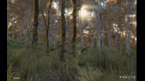 DayZ - Broadleaf & Grass Shader Early Preview Trailer