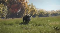 theHunter: Call of the Wild - PS4 Teaser Trailer